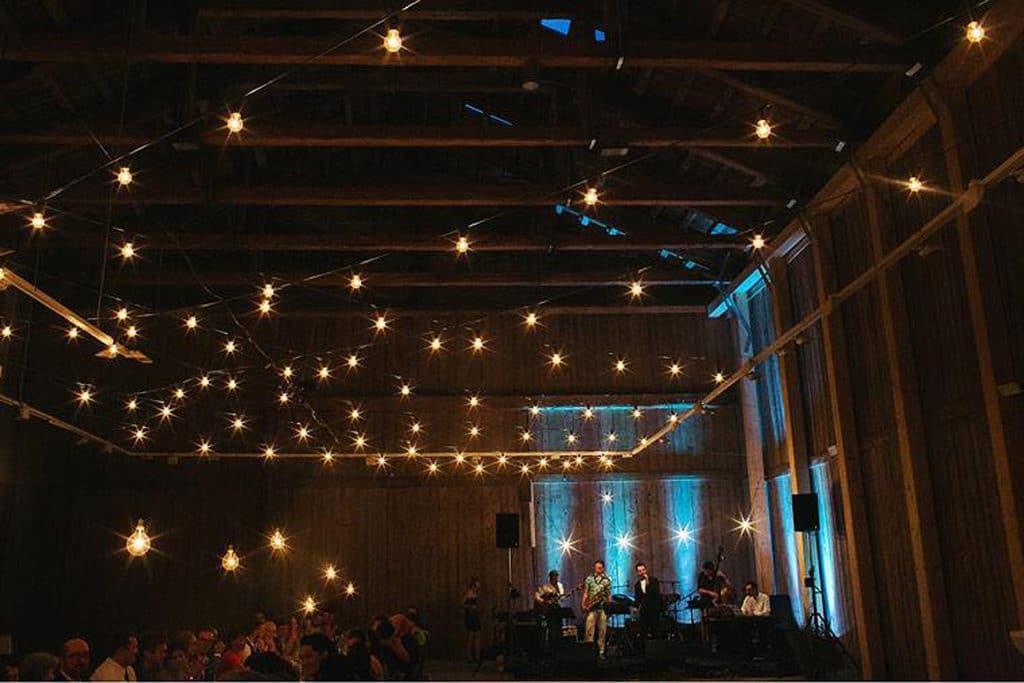 garden lightsi in ambientalna osvetlitev