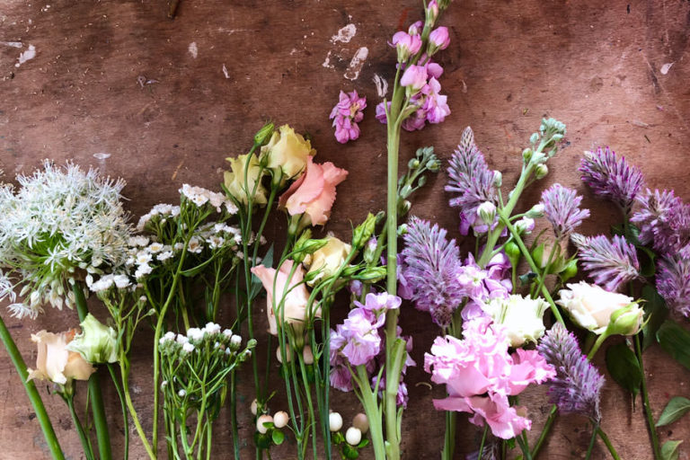 pomen barve rož položenih na mizi